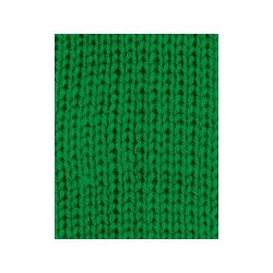 Charity DK Emerald 022 100g