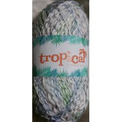 Elle Tropical DK Barbuda 510 100g