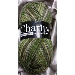 Charity DK Sedge Green 223 100g