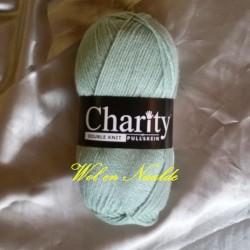 Charity DK 074 Snowmoon 100g
